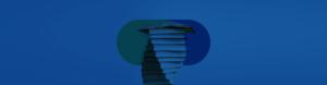Başucu kitapları-iş hayatı kitapları yazarlarından hap eğitim